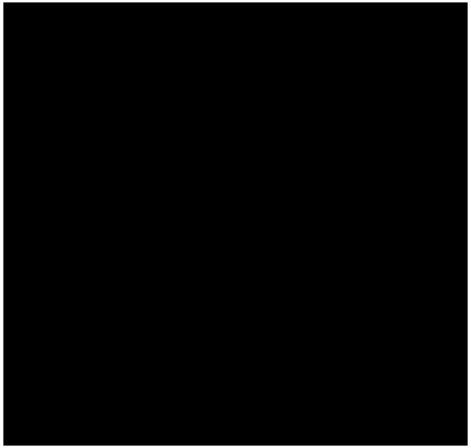 FisioMedit_logo